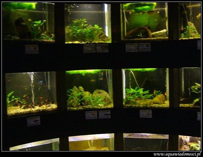 Fotorelacja z: ZOO i wystawa w Brnie