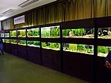 Akva Expo 2010
